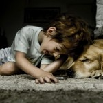 The Happiness Found in a Home With Pets