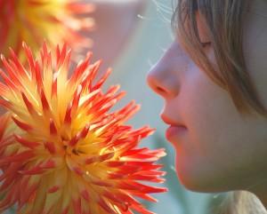 Flower meet and greet