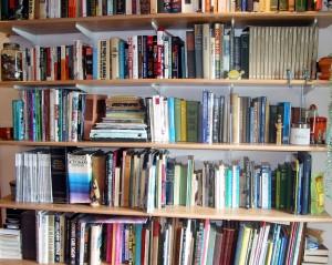 My newly organized bookshelf
