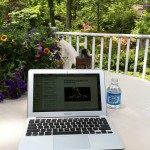 The Perks and Challenges of Working from Home