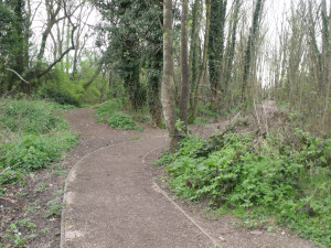 River Rea Trail - Mill Lane, Northfield - path