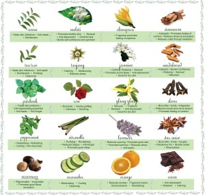 essential-oils-chart